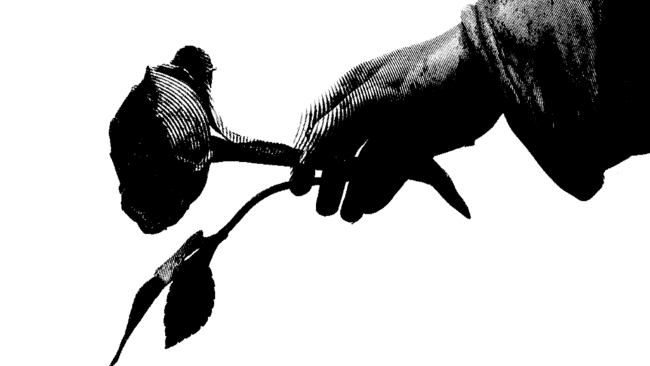 Decorative image of a statue hand holding out a rose