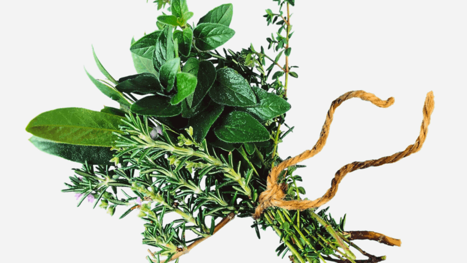 Decorative image of herbs tied together