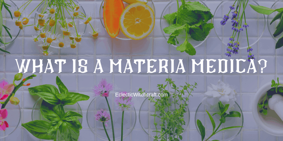Decorative Image | What Is A Materia Medica? | A Materia Medica is a system for keeping information about plants organized.