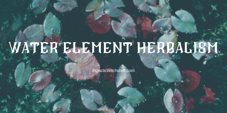 Herbs and Plants for Witchcraft: Water Element Herbs