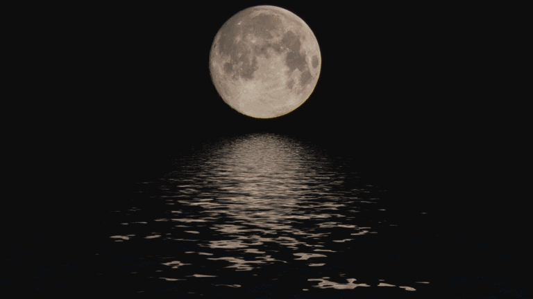 Where To Store Moon Water: Keeping Your Magick Water Safe