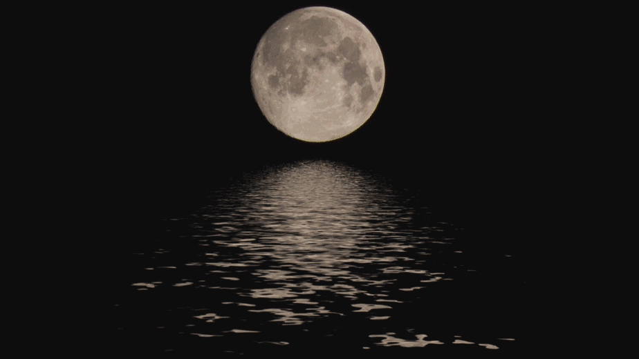 Decorative Image | Where To Store Moon Water: Keeping Your Magick Water Safe | Once you know the history of moon water and how to make it even if you're stuck inside, you may be wondering how best to store moon water.