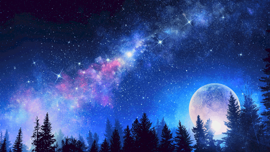Decorative image of the moon behind fir trees in a beautiful sky with the milky way visible