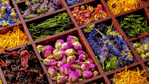 Decorative image of dried herbal remedies