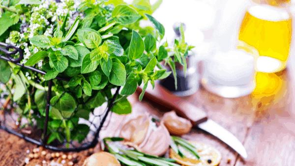 Decorative image of herbal remedies