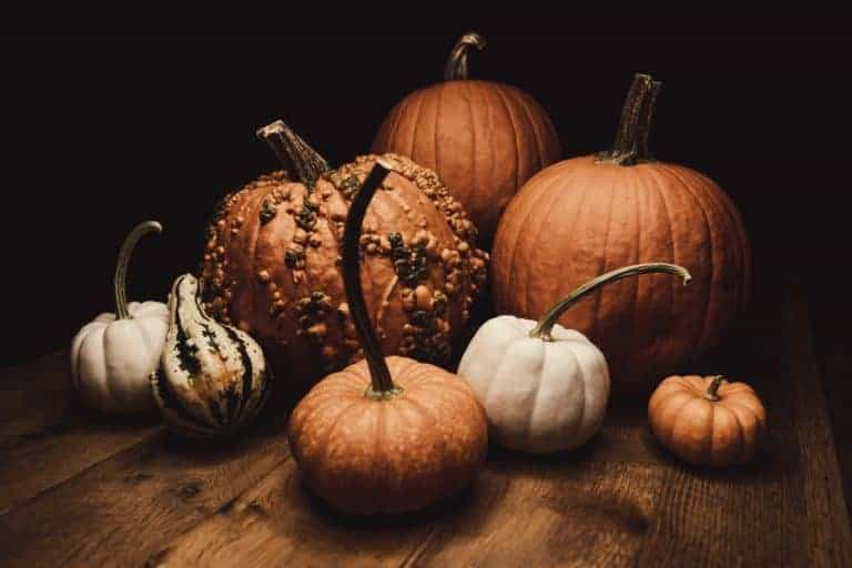 Samhain Pumpkin Bread Recipe: Decadent Pagan Food
