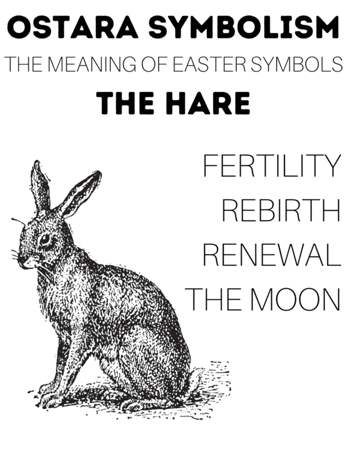 An infographic with the meaning of Ostara symbolism. This one features the hare which represents rebirth, fertility, and the moon.