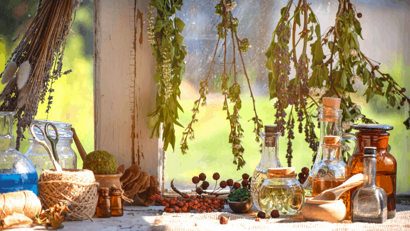 solitary Witch tools like herbs hanging by a window