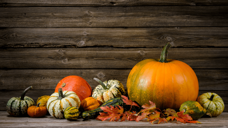 Squash, pumpkins, and gourds with leaves on a wooden table against a wooden background.