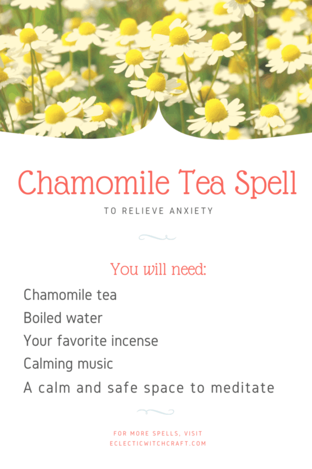 Chamomile tea spell to relieve anxiety. A field of chamomile flowers.