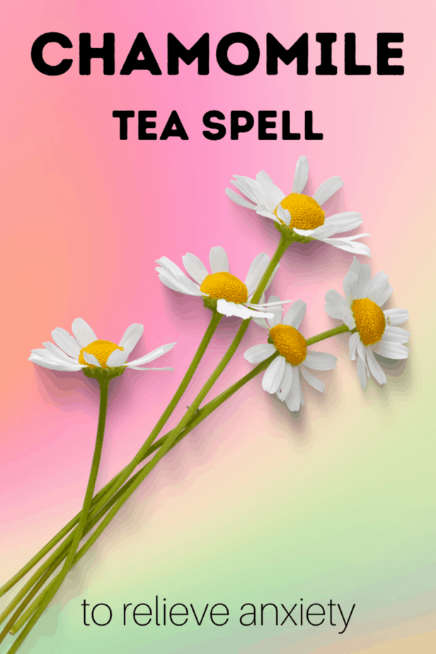 Decorative Image | Chamomile Tea For Anxiety | Stock up on your chamomile tea for anxiety! This magickal herb has long been used to help the body and mind to relax. This flower and herb is associated with the sun and confidence and can pack a powerful punch in magick and medicine.
