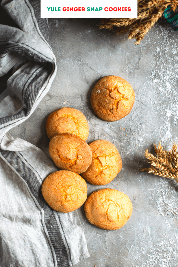 Yule Ginger snap cookies next to wheat on a gray background