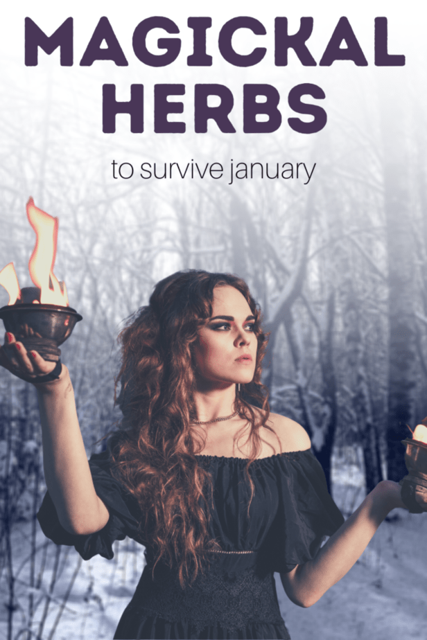 Magickal herbs to survive January. A witch holding fire and witchy tools looking out into a snowy forest.