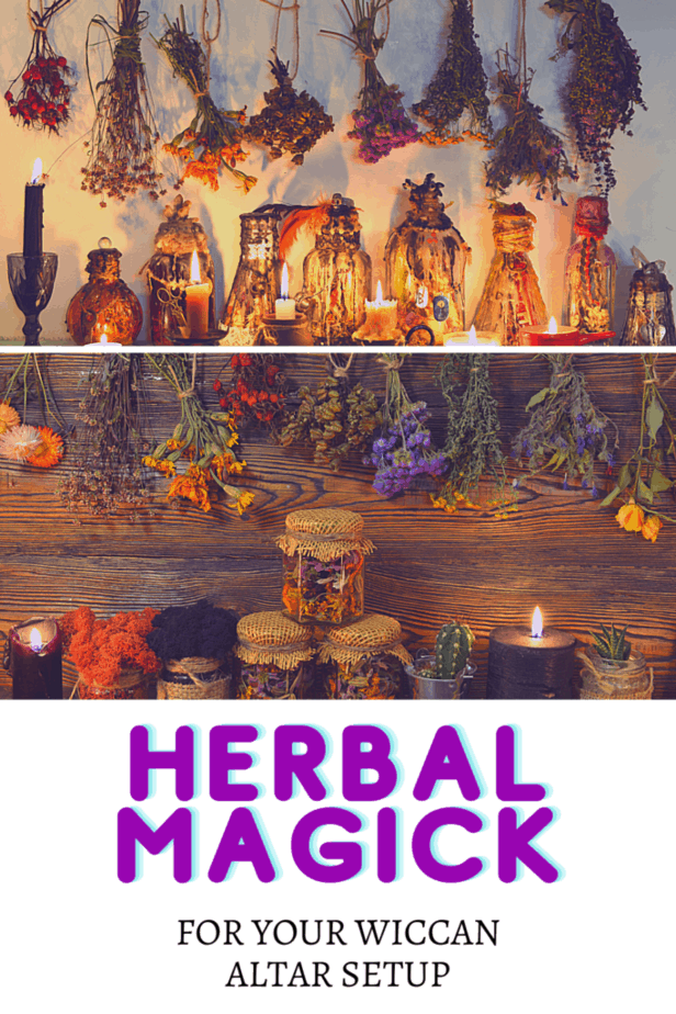 Dried herbs in bottles, jars, and hanging from the walls. Lit black candles. Fake plants. Herbal magick for your Wiccan altar setup.