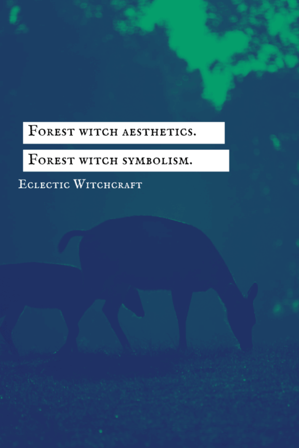 Forest witch aesthetics. Forest witch symbolism. Eclectic witchcraft. Deer grazing on the ground in the forest.