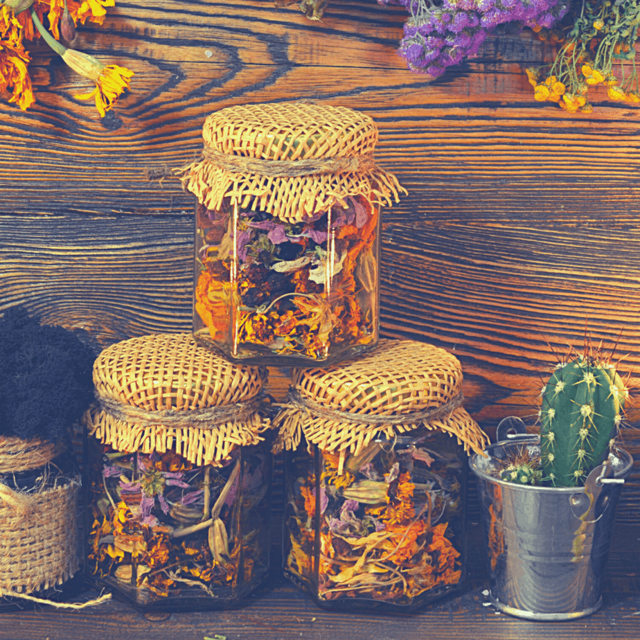Magical spell jars filled with herbs to protect the home, family, and loved ones next to a cactus and hanging herbs on the wall.