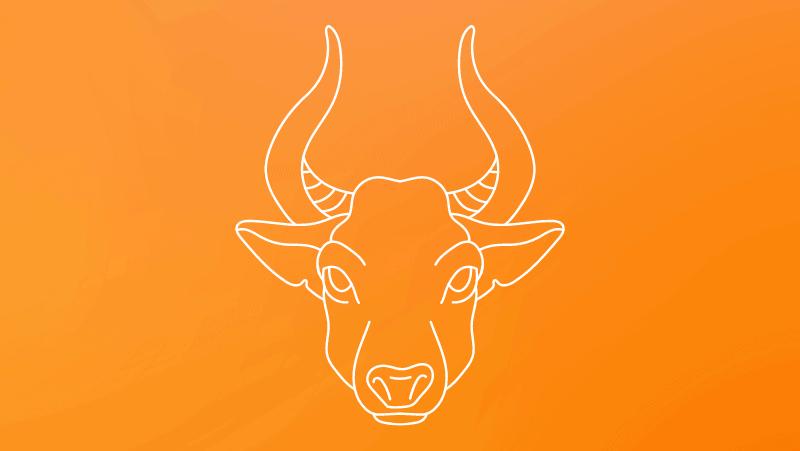 Taurus bull head against a yellow orange gradient