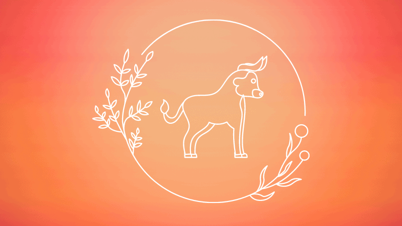 Floral circle and bull against a yellow orange gradient