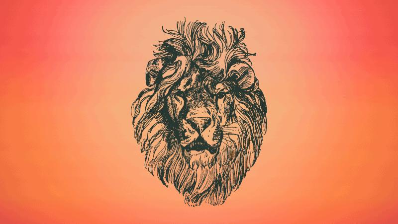 Detailed lion head on orange gradient background